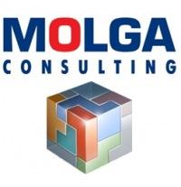 Molga Consulting консалтинговая компания