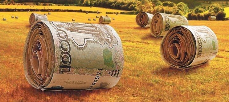 грин моней займ отзывы должников